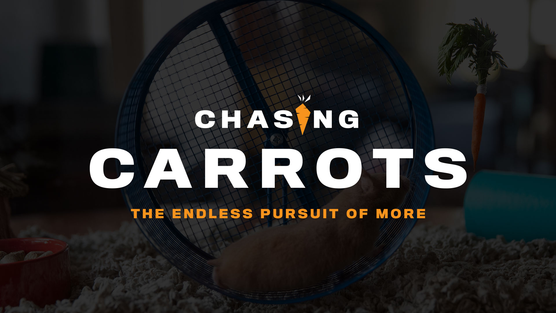Chasing Carrots | Week Four